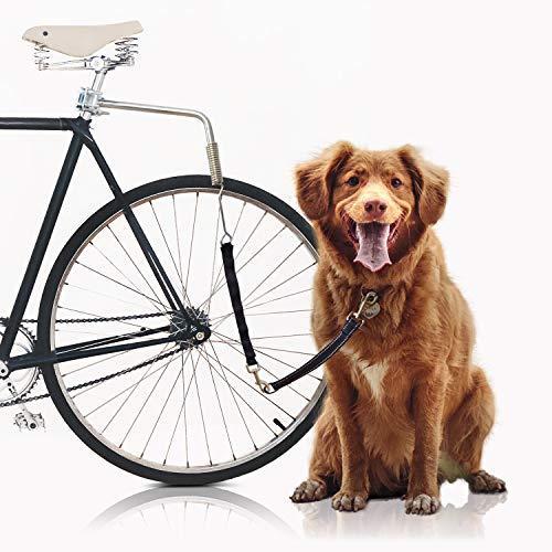 Soporte Para Pasear Perro En Bicicleta